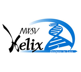NWSV Helix: Workshop ondernemen